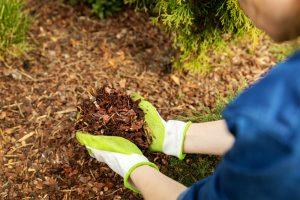 Sustainable Gardening 2021